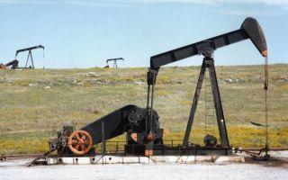 Нефть начала расти на фоне активизации трейдеров