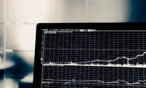 Акции чекового инвестиционного фонда: что такое ЧИФ и как обналичить бумаги?