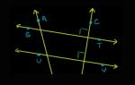 Форекс линии. Разновидности, специфика, правила применения