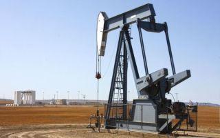 Данные Минэнерго США заставили трейдеров увеличить закупки нефти
