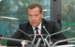 Медведев придумал, как можно ускорить легализацию самозанятых