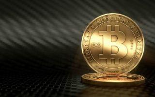 В какую криптовалюту инвестировать долгосрочно в новом году?