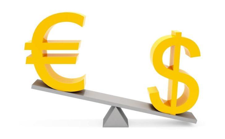 Организация валютной биржи
