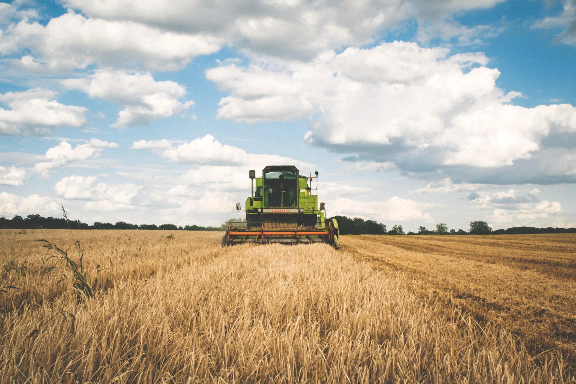 Как заработать на фермерстве